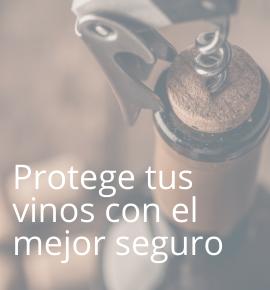 seguro vinos